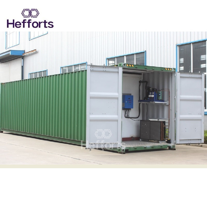 european standard high reputation one-stop service meat cold freezer 20feet containerized cold room